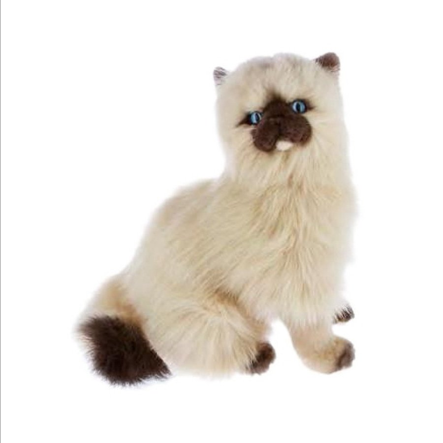 Toffee - Realistic Soft Plush Toy